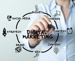 Digital Marketing Programs Should Be Customized